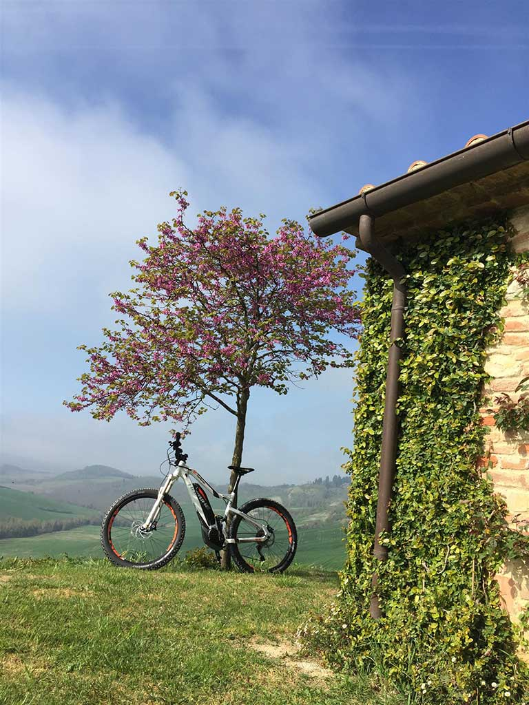 Beautiful Tuscan nature - Biking Tuscany Tour