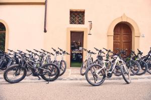 Bike 016