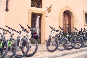 Bike 017