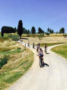 Tuscany bike tours - Castelfalfi (Montaione) Natural Reserve