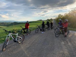 Tuscany bike tours - Truffle day experience